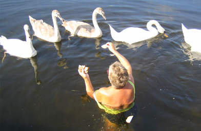 Grace Graham feeding the swans off her dock.                                             (Christina Shockley)
