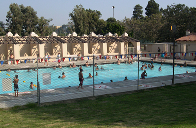 The Griffith pool is a playground for the young and (sometimes) unemployed.                                             (Jason Morphew)
