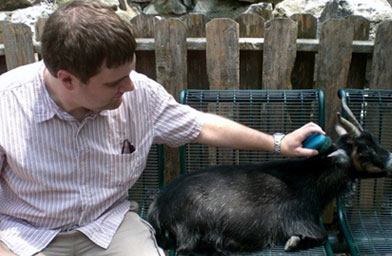 Andy brushing a goat at the St. Louis Zoo.                                             (Courtesy of Andy Maynard)