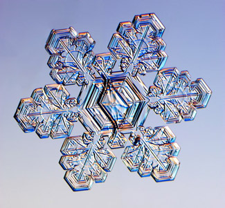 This snowflake is made of two different crystals that are connected in the center. This kind of snow crystal is called a split plate and star.                                             (Kenneth Libbricht)