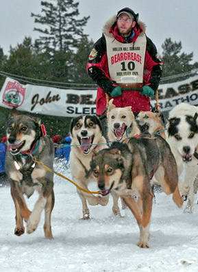 Musher Keith Ali at the starting line on day one of the 2006 Beargrease Sled Dog Race. The event is named for John Beargrease, a 19th-century Chippewa man who delivered mail by dog sled along the Minnesota North Shore.                                             (Kit Larson)