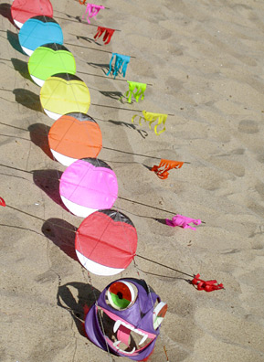 A centipede kite rests on the sand, waiting. Its eyes spin when it's airborne.                                             (Krissy Clark)