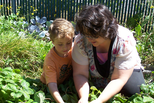 "Debra Nicholls and her son Conner during a home-school lesson.  Debra says, ""This summer, much of our learning happens outside, in the garden.""                                             (Courtesy Debra Nicholls)"