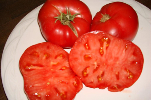 A characteristic of Pappenfus tomatoes is the small number of seeds.                                             (Joyce Pappenfus)