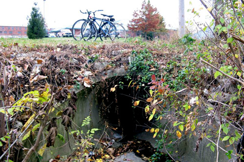 The entrance to the drain tunnels.                                             (Adam Allington)