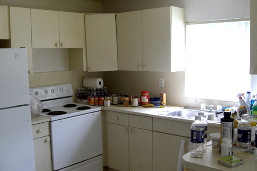 The kitchen in Marie Nadine Pierre's new home. She is a vegan, which made living in homeless shelters very difficult for her.                                             (Andrew Stelzer)