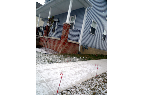 Skinny candy canes line the sidewalk between Charnita's and Helen's homes.                                             (Desiree Cooper)