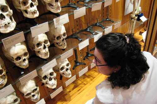 Mutter Museum curator Anna Dhody reads the skulls' bios.  Most were 19th-century outcasts.                                             (Todd Vachon/WHYY)