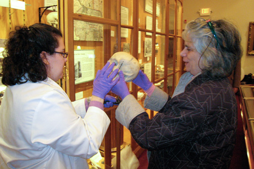 Anna Dhody and professor Janet Monge admire one of the Hyrtl skulls.                                             (Todd Vachon/WHYY)