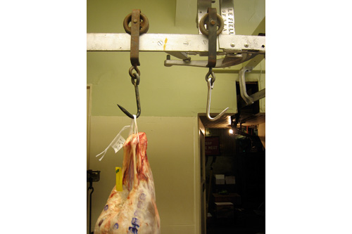 After the pig, students butcher a lamb, seen hanging here.  Avedano's has been a butcher shop in one form or another since 1901.  Butchers used to unload carcasses from trucks onto the metal rail, which is still in place, and run the meat through the shop into the meat locker.                                             (John Jakubowski)
